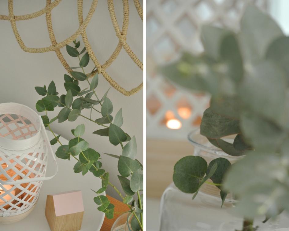 Sonnenspiegel-Laterne-Eukalyptus