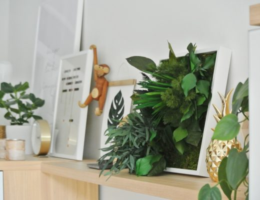 styleGREEN-Pflanzenbild-Wohnwand-Wohnzimmer