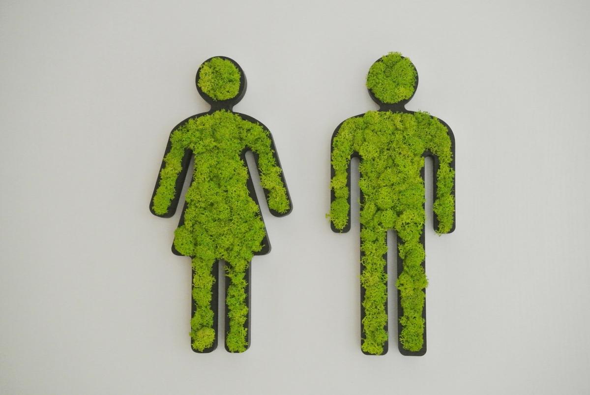 styleGREEN-Piktogramme-Mann-und-Frau-gefüllt-mit-Islandmoos