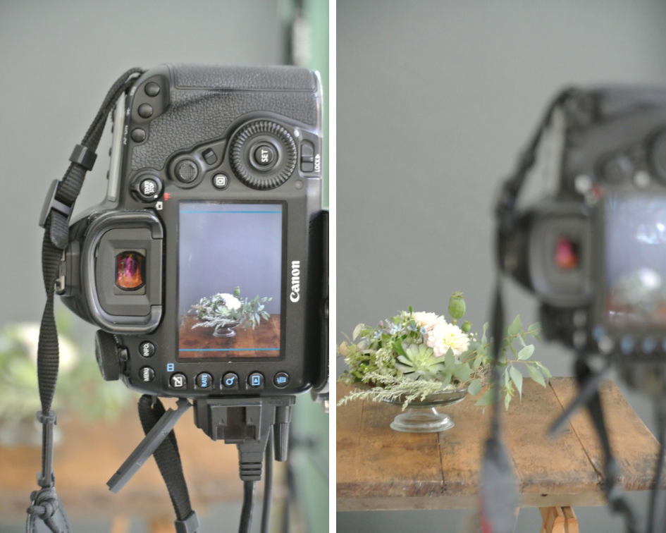 Blumen-Workshop-Fotoshooting
