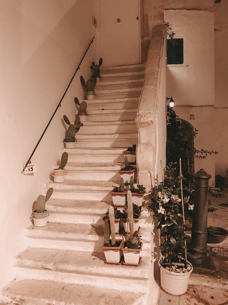 Locorotondo-Apulien-Treppe-Kakteen-abends